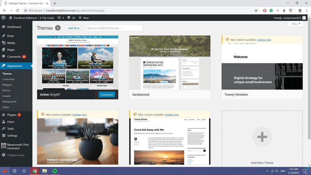 Wordpress Themes Installed